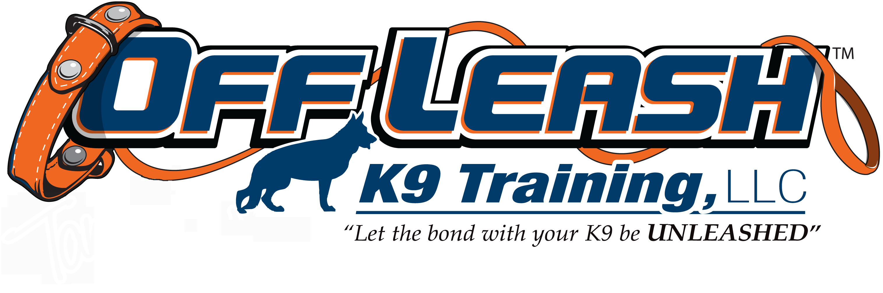 Fairfax Offleash K9 Dog Training